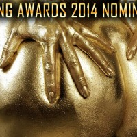 The Annual 2014 Spanking Awards